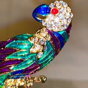 Colorful Vintage Parrot Pin 3 1/4 inches Long